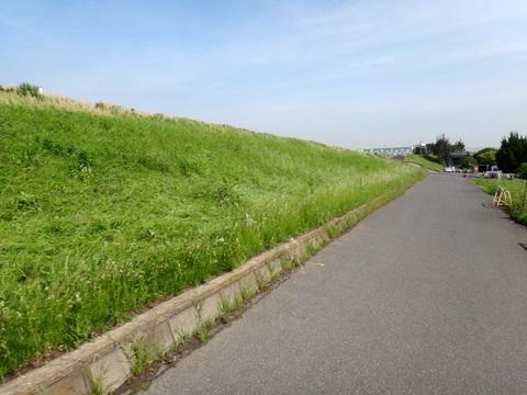 20110525_筑波山-1.JPG