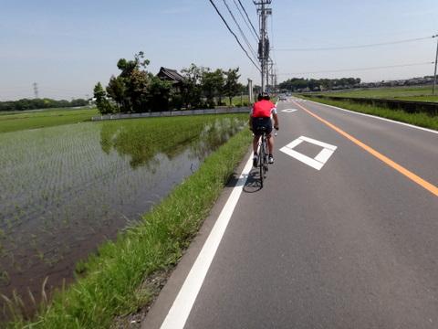20110525_筑波山-3.JPG