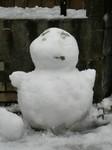 雪が降った011.jpg